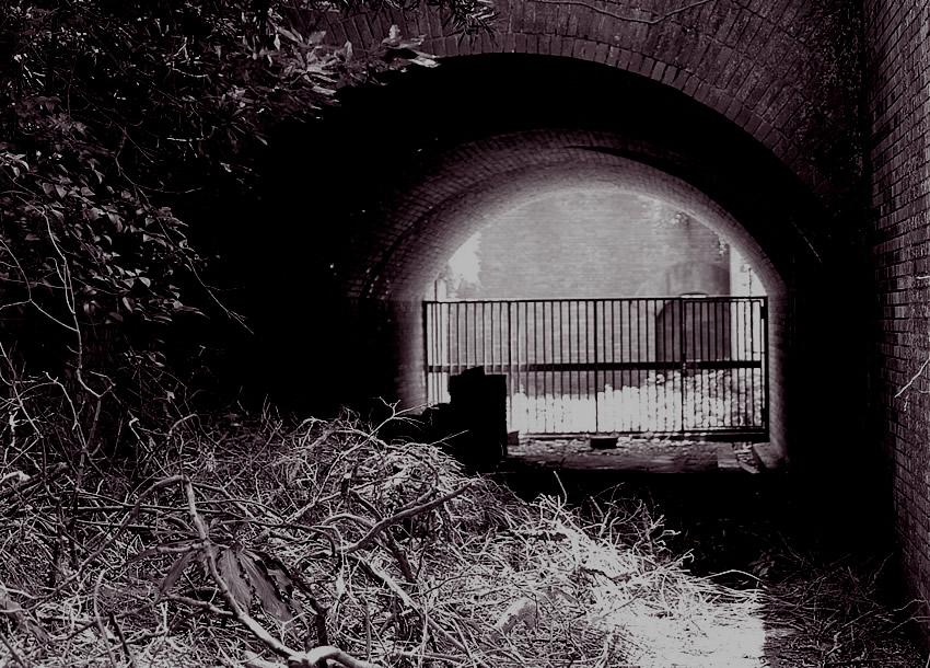 トンネルの白と黒