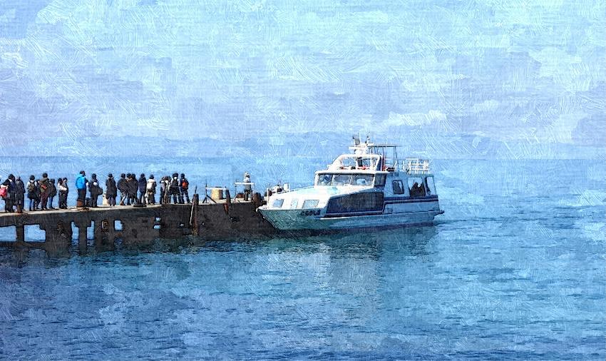 友ヶ島汽船の到着